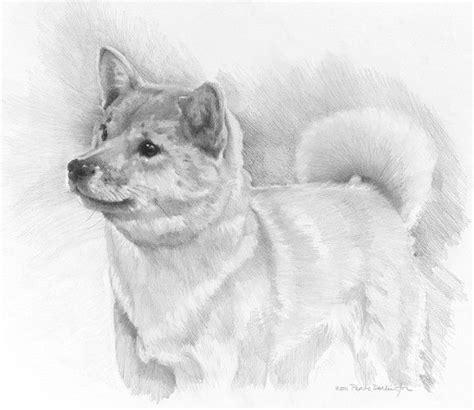 hand  dog portrait     phoebe darlington