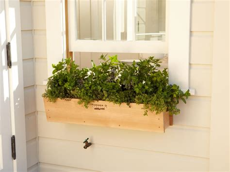 House Plants For Window by Window Box Edibles Hgtv