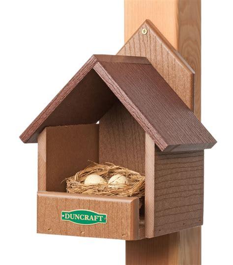 duncraft com duncraft 3021 eco friendly cardinal bird house