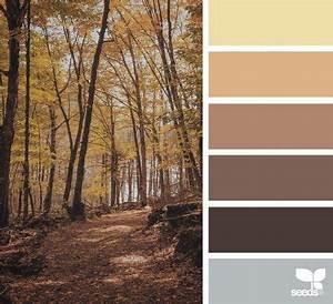 Welche Wandfarbe Passt Zu Kernbuche : welche farbe passt zu braun tipps f r sch ne ~ Watch28wear.com Haus und Dekorationen