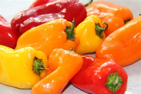 sweet pepper stranded in cleveland roasted mini sweet pepper canap 233 s recipe stuffed roasted sweet peppers