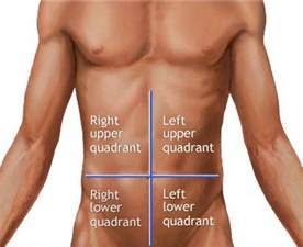 Right Upper Quadrant Liver Is Located On