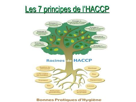 haccp en cuisine le système haccp