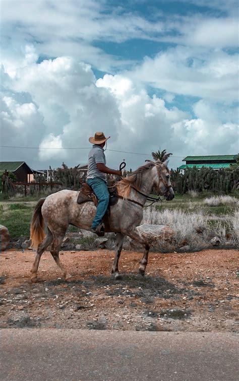 aruba riding horseback tour