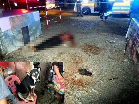 แค้นด่าสุนัขที่เลี้ยง หนุ่มร้านสินค้าราคาถูกแทงยามดับคา ...