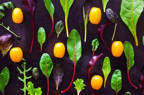 cuisiner blettes feuilles nouveaux lingots découvrez 7 recettes pour vos jeunes