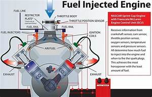What Are The Benefits And Differences Between The Carburetor And A Fuel Injector