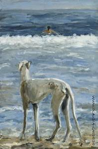 292 best images about greyhounds on Pinterest