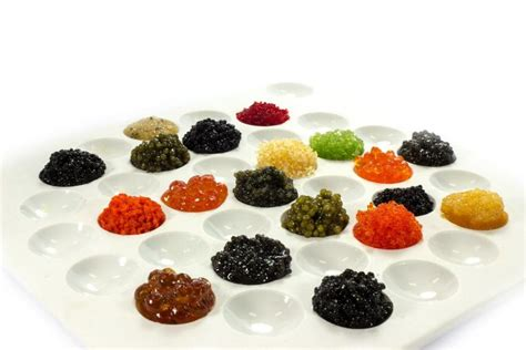 guide  caviar  fish roe travel channel
