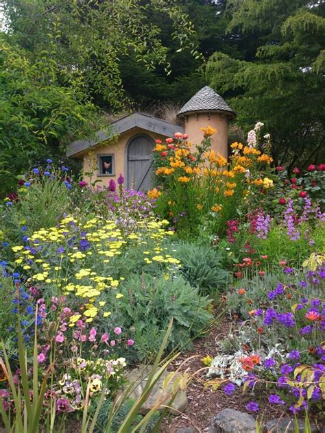 sweet colorful  fashioned english cottage garden sunny