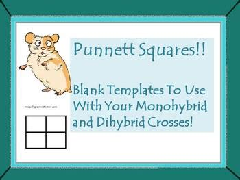 It is named after reginald c. Punnett Squares!!! Blank Templates by Vicki - The Science Lady   TpT