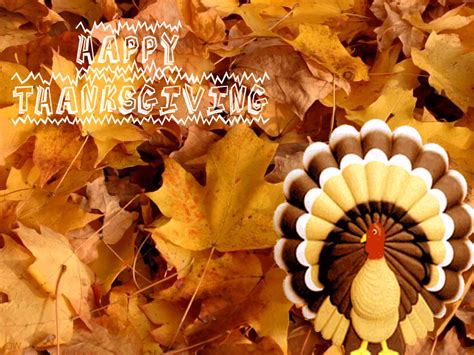 Free Animated Thanksgiving Desktop Wallpapers - animated thanksgiving wallpaper backgrounds wallpapersafari