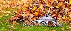 Was Ist Im Februar Im Garten Zu Tun : der garten im oktober was jetzt zu tun ist ratgeber ~ Lizthompson.info Haus und Dekorationen