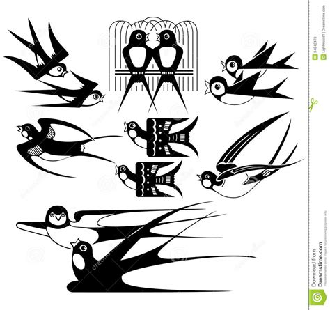 swallows collection stock vector image  painting pets