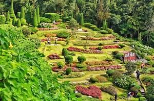 Böschung Bepflanzen Fotos : b schung bepflanzen ideen ~ Orissabook.com Haus und Dekorationen