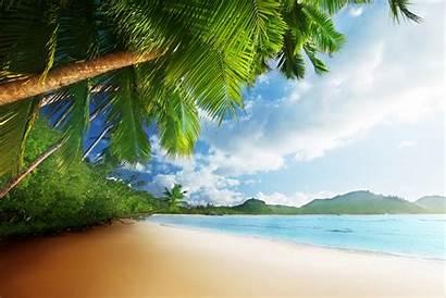 Tropical Beach Paradise Coast Sand Sunshine Sun
