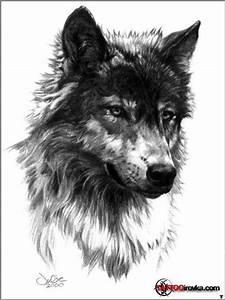 KURT DÖVMESİ - WOLF TATTOO | Studio Kırmızı Tattoo Shop ...