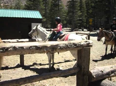 mammoth ride horseback lakes