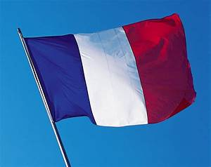 19,000 French websites suffer cyber attack in ...  French