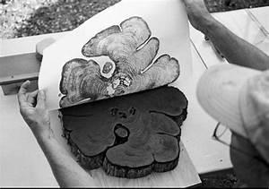 25+ best ideas about Wood grain on Pinterest | Wood print ...