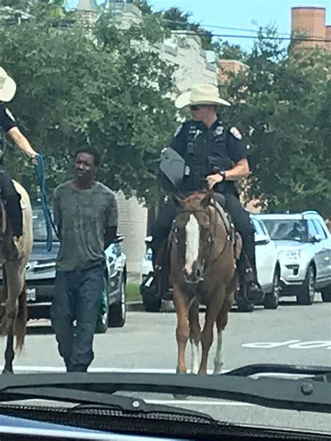 galveston police apologize  photo surfaces  horse
