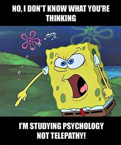 Angry Spongebob Meme. The psychology student version. For ...
