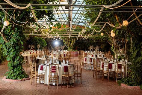 phoenix wedding venues boojum tree hidden gardens