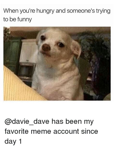 You Re Funny Meme - 25 best memes about my favorite meme my favorite memes