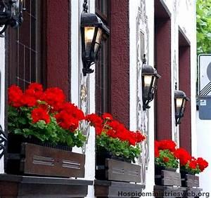 Herbstliche Blumenkästen Bilder : 35 besten blumenk sten balkon selber bauen ideen bilder ~ Lizthompson.info Haus und Dekorationen