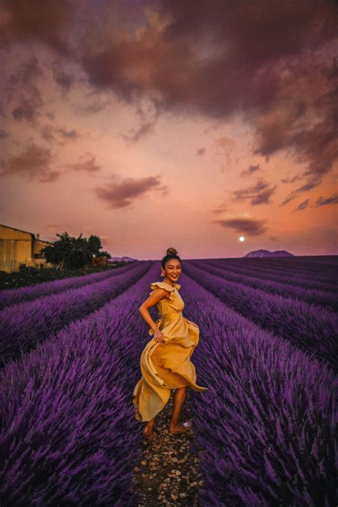 instagram outfits   lavender fields  provence