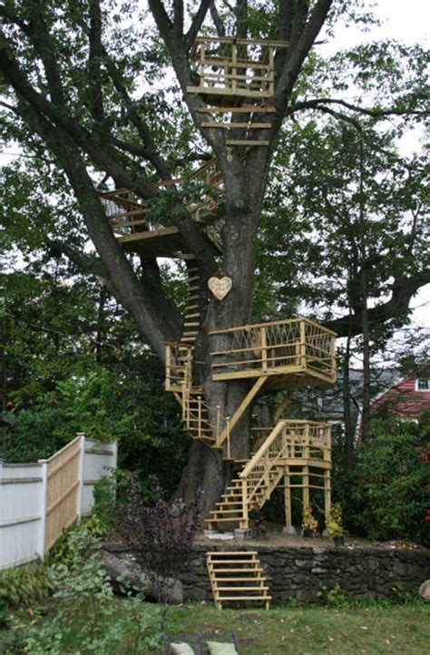 big tree house neighbors feeling queasy dianne williamson telegramcom worcester ma