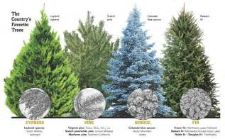 types of artificial trees images