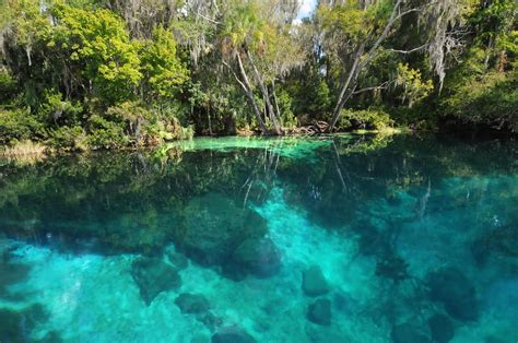 Plans To Restore Rainbow Springs Undergoing Revision ...
