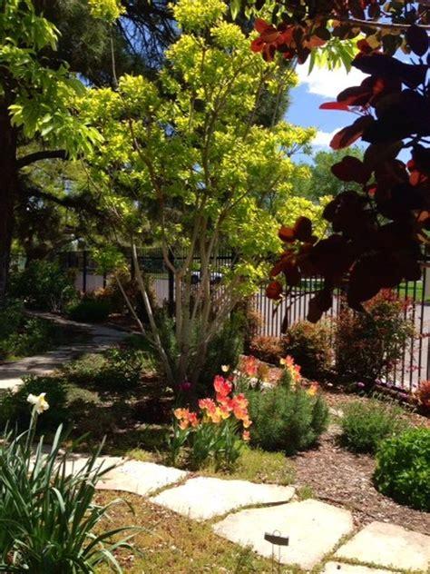 albuquerque garden center albuquerque nm wedding venue