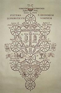 SYMBOLISM. Tree of life.     INKSPIRATION