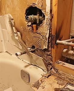 Black mould removalblack mold removal mold remediation for Bathroom mildew removal