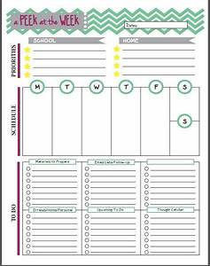 resultado de imagen de teacher39s diary template teacher With teacher diary template