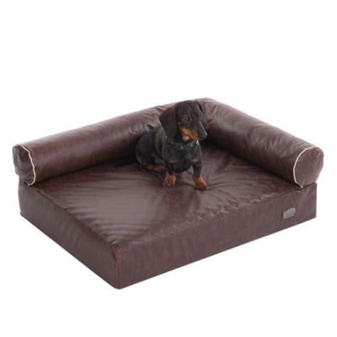 canapé desing wellness divan antique canapé pour chien zooplus
