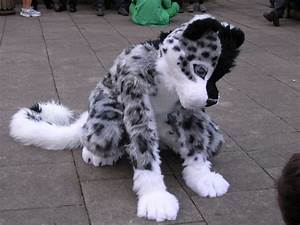 The Fursuit Database