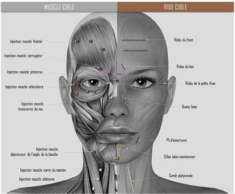 Sourcils – Beauté et entretien des sourcils