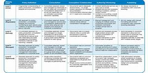 Capability Maturity Model For Policy Lifecycle Management