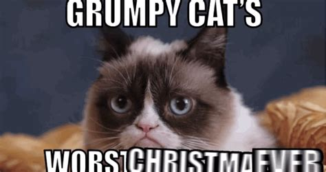 Grumpy Cat's Christmas Movie See The First Clip [video]