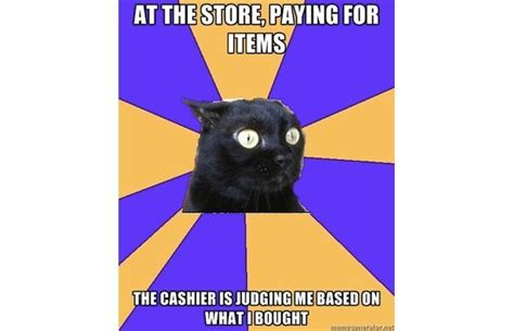 Anxiety Cat Memes - anxiety cat meme fun with psychology pinterest