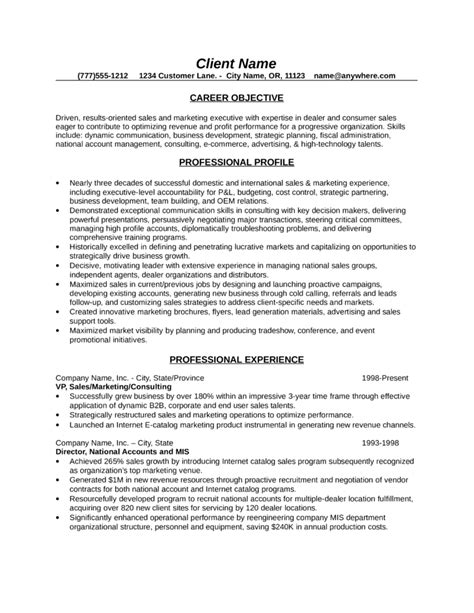 Professional Resume Sles by Professional Sales Consultant Resume Template