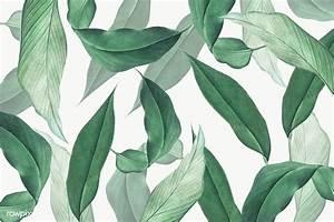 Flower Invitations Templates Free Tropical Leaves Background Free Transparent Png 594533