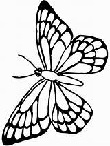 Butterfly Coloring Printable Stencil Blank Simple Template Monarch Outline sketch template