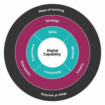 Digital Capability Marketing Success Key Capabilites Vital
