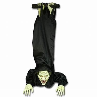 Spirit Halloween Vampire Fandom Rocking Wikia Wiki