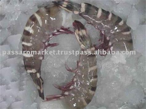 sea tiger shrimp productsindia sea tiger shrimp supplier