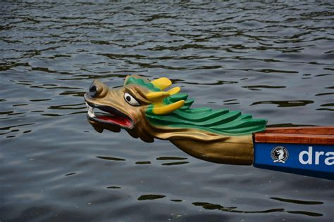 Dragon Boat Racing Requirements by Dragon Boat Races 2015 Rotary Club Of Prague International